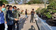 Ratusan Bonsai Ramaikan Kontes dan Pameran Bonsai PPBI di Gressmall