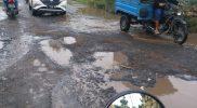 Penampakan jalan rusak di ruas Sukodadi-Pucangro. Foto: Ammy/Progresnews.id.