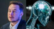 Ilustrasi chip pada otak manusia. Foto: teslarati.com.