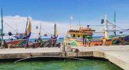 Kapal nelayan yang bersandar di dermaga Pelabuhan Perikanan Nasional (PPN) Brondong Lamongan. Foto : Ammy